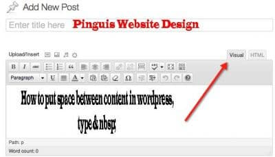 Wordpress Visual Editor and Text Editor in Wordpress How to add space