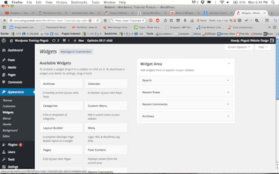 How to install Standard widget in Sidebar and footer area