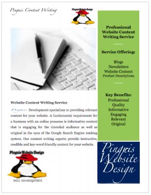 Pinguis Content Writing Ireland Pinguis Website Design Results focused Website Design