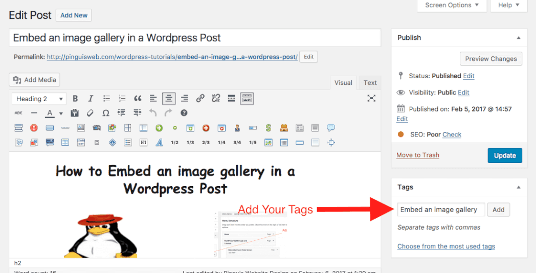How to Add Tag in Post Editor Screen