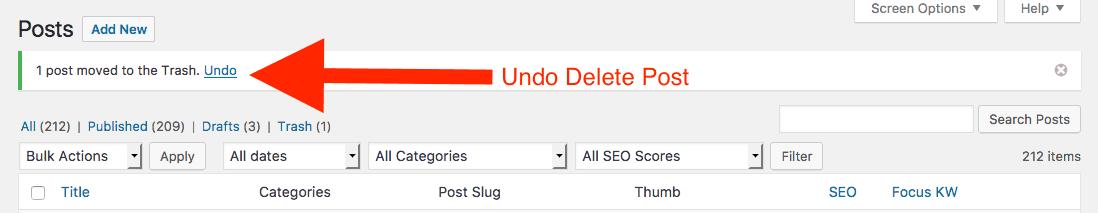 Undo Deleted Posts