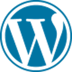wordpress website desgin troubleshooting seo design