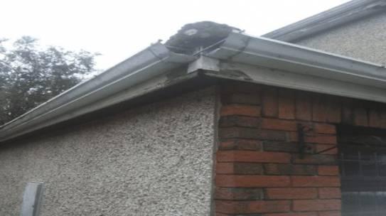 Roofing Nottingham