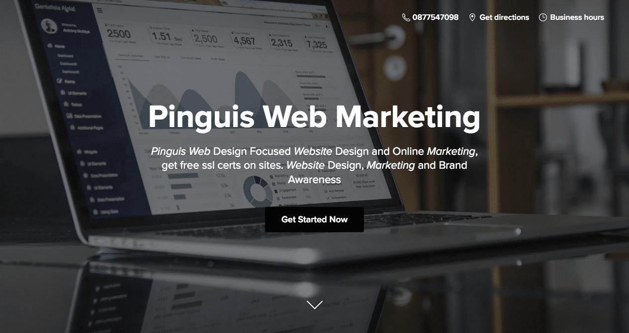 Pinguis Web Marketing Online